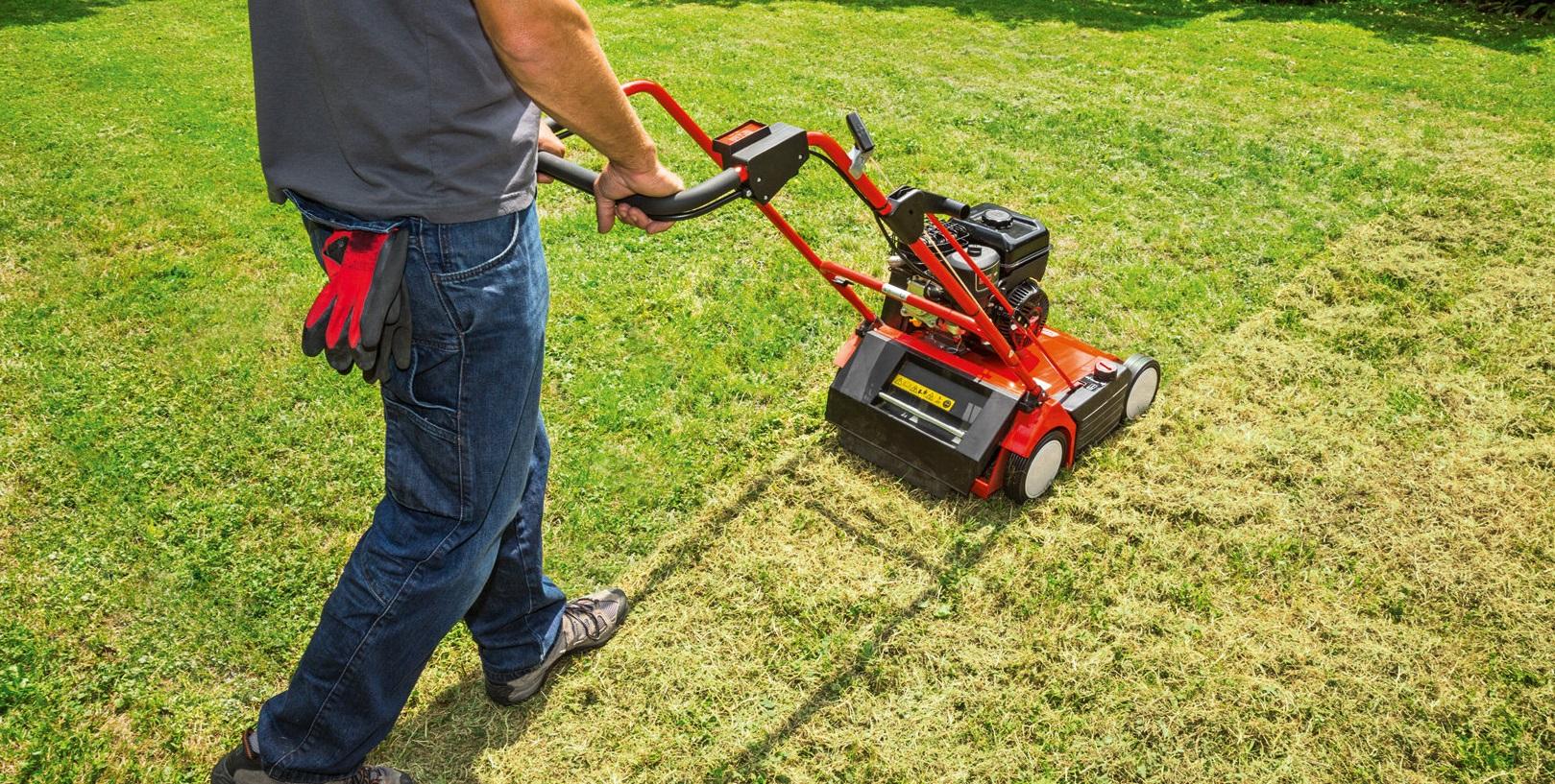 Jak získat trávník, na který budete hrdý?