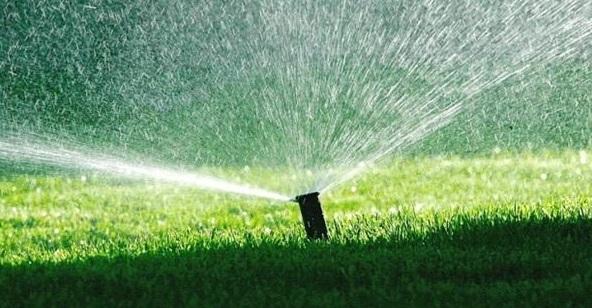 Kdy je ideální čas na zavlažování trávníku?