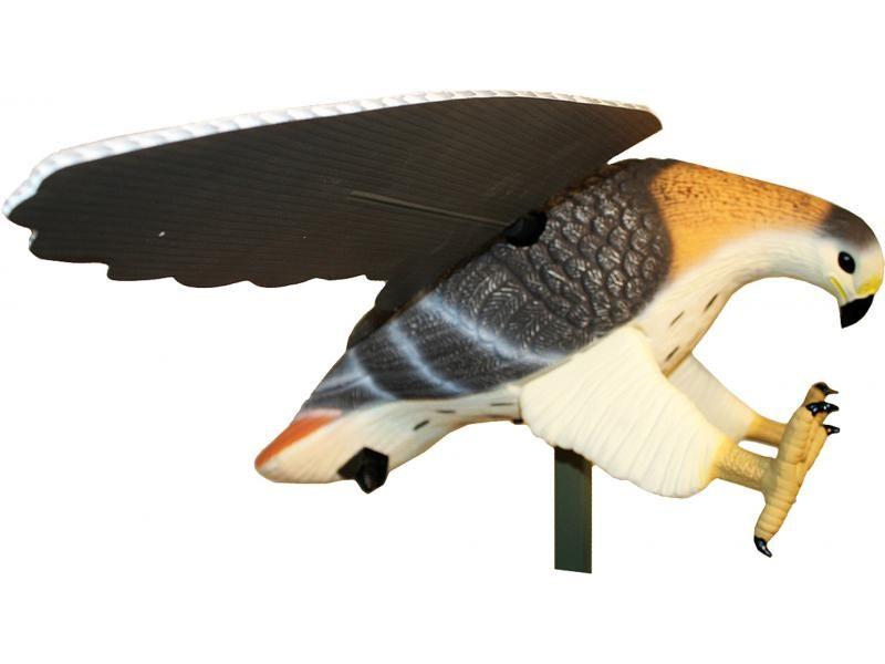 Balabán MOJO Hawk - Jastrab