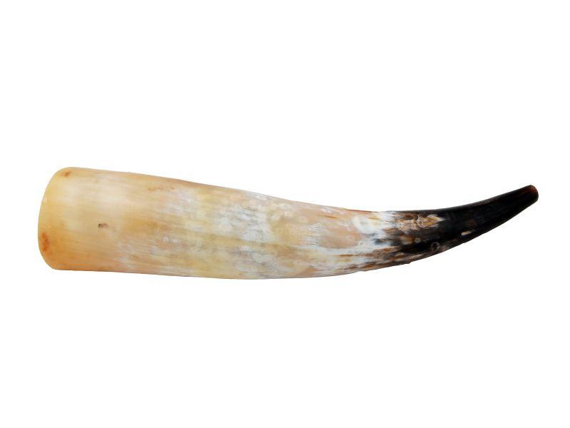 Ručadlo z volského rohu 60 - 65 cm
